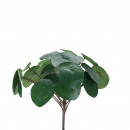 wholesale Home & Living: Chinese money tree pick, 25 leaves, H30cm, green